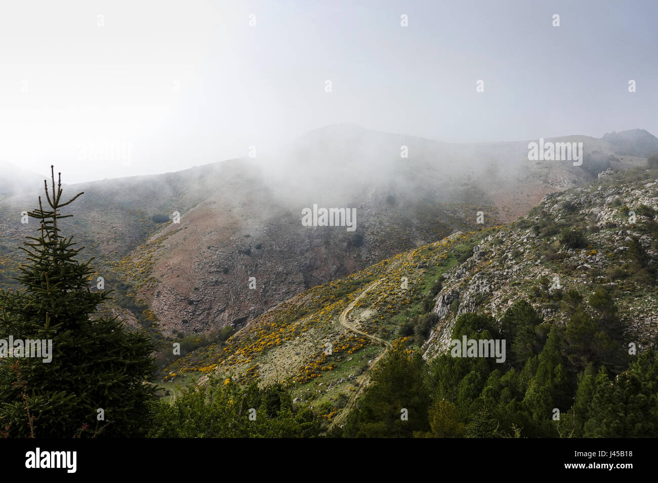 Scenic clouded mountain range at Valle del general, Serranía de Ronda, Malaga, Spain. - Stock Image