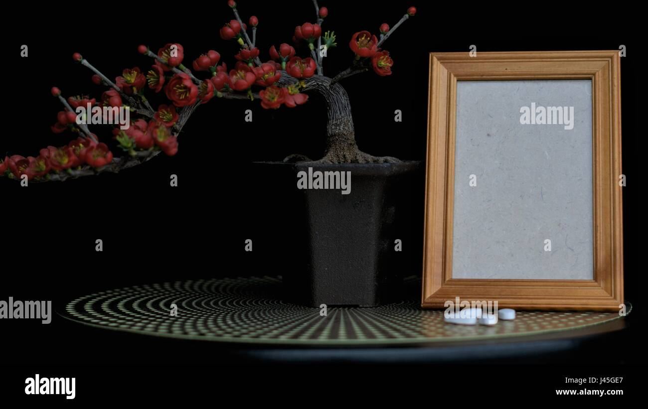 Pills in front of an empty frame with bonsai red flowers with a background - Stock Image