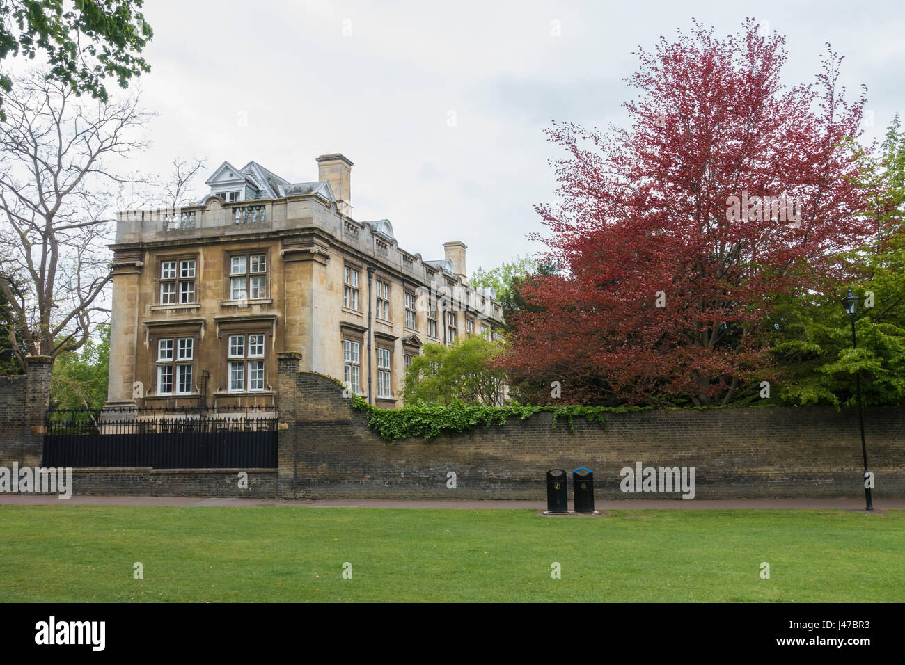 Fellows building Christs college from Christs Pieces - Stock Image