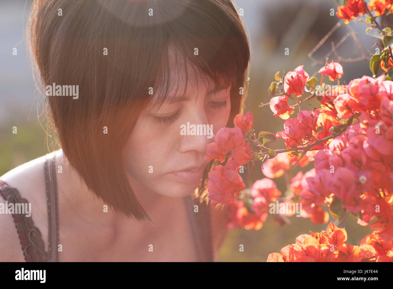 Beautiful young Asian woman with short black hair smelling a orange bougainvillea flower on a summer day with sun Stock Photo