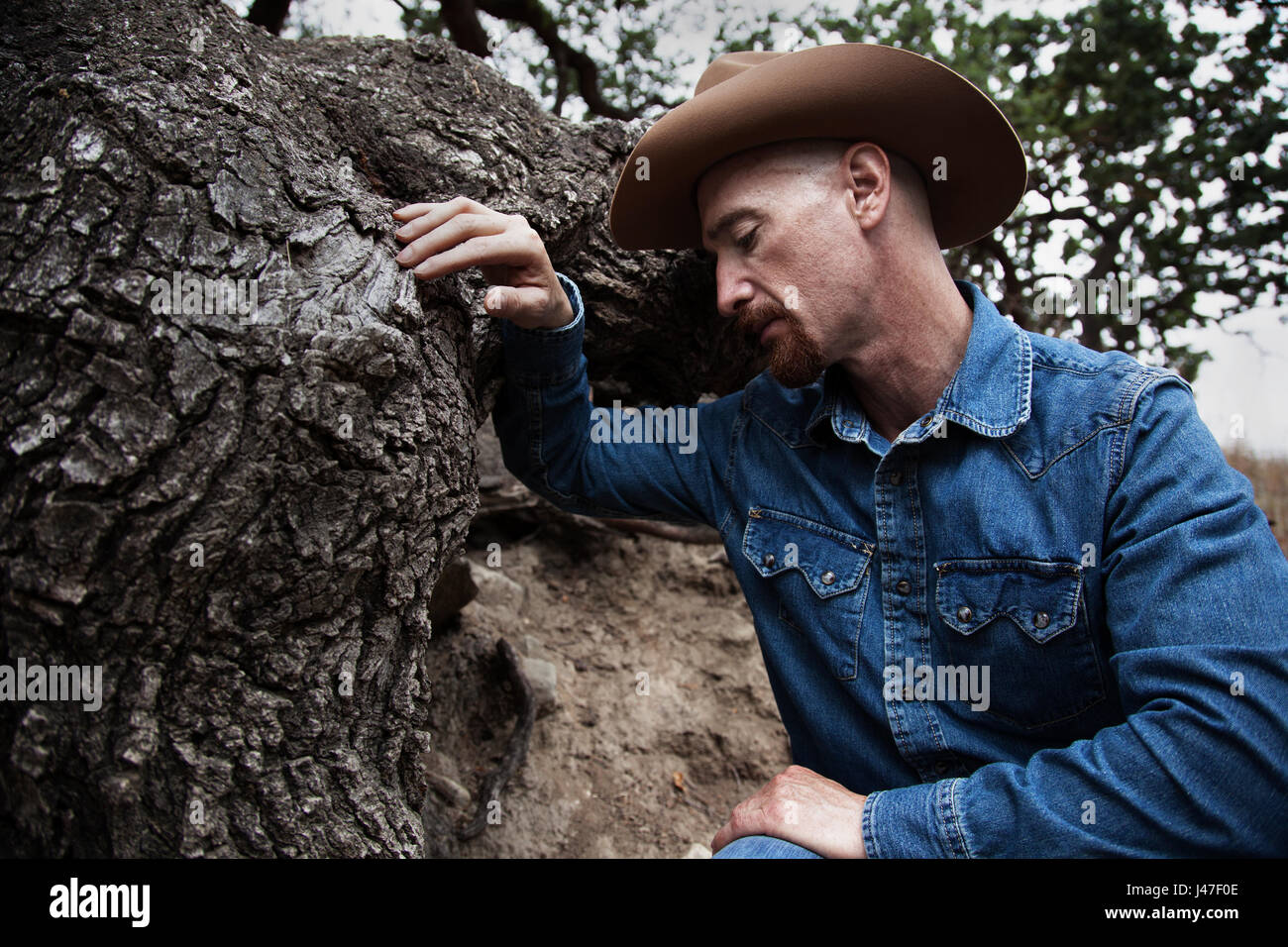 197fe84a8f9e9 Portrait of a sad cowboy with a red goatee wearing a blue denim chambray  cowboy shirt