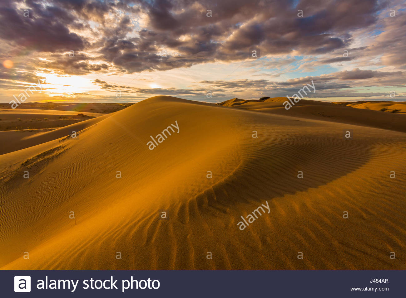 Beautiful views of the desert landscape. Gobi Desert. Mongolia - Stock Image