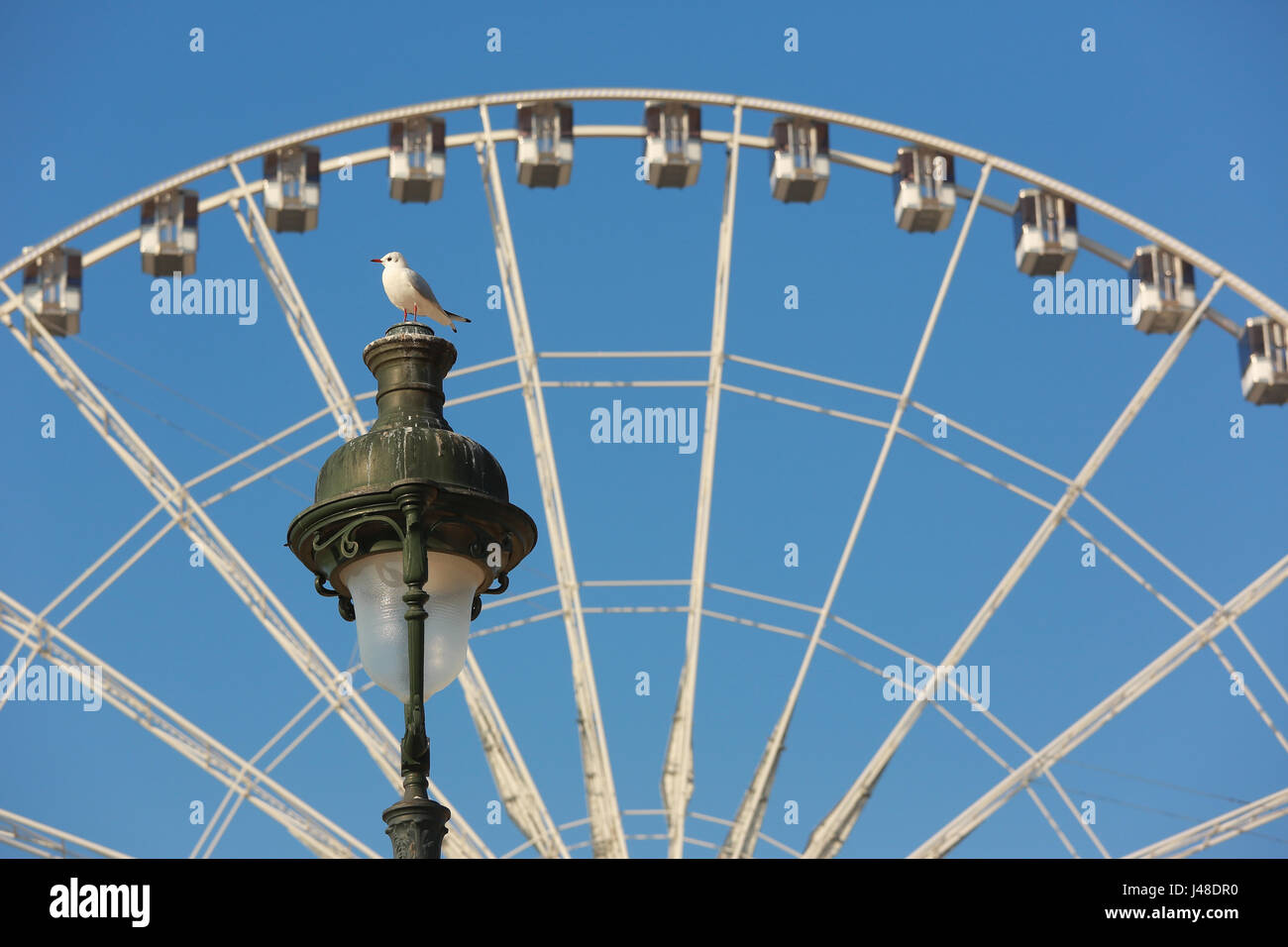 Ferris wheel and the street lamp in Paris.A seagull sits on the lamp. - Stock Image