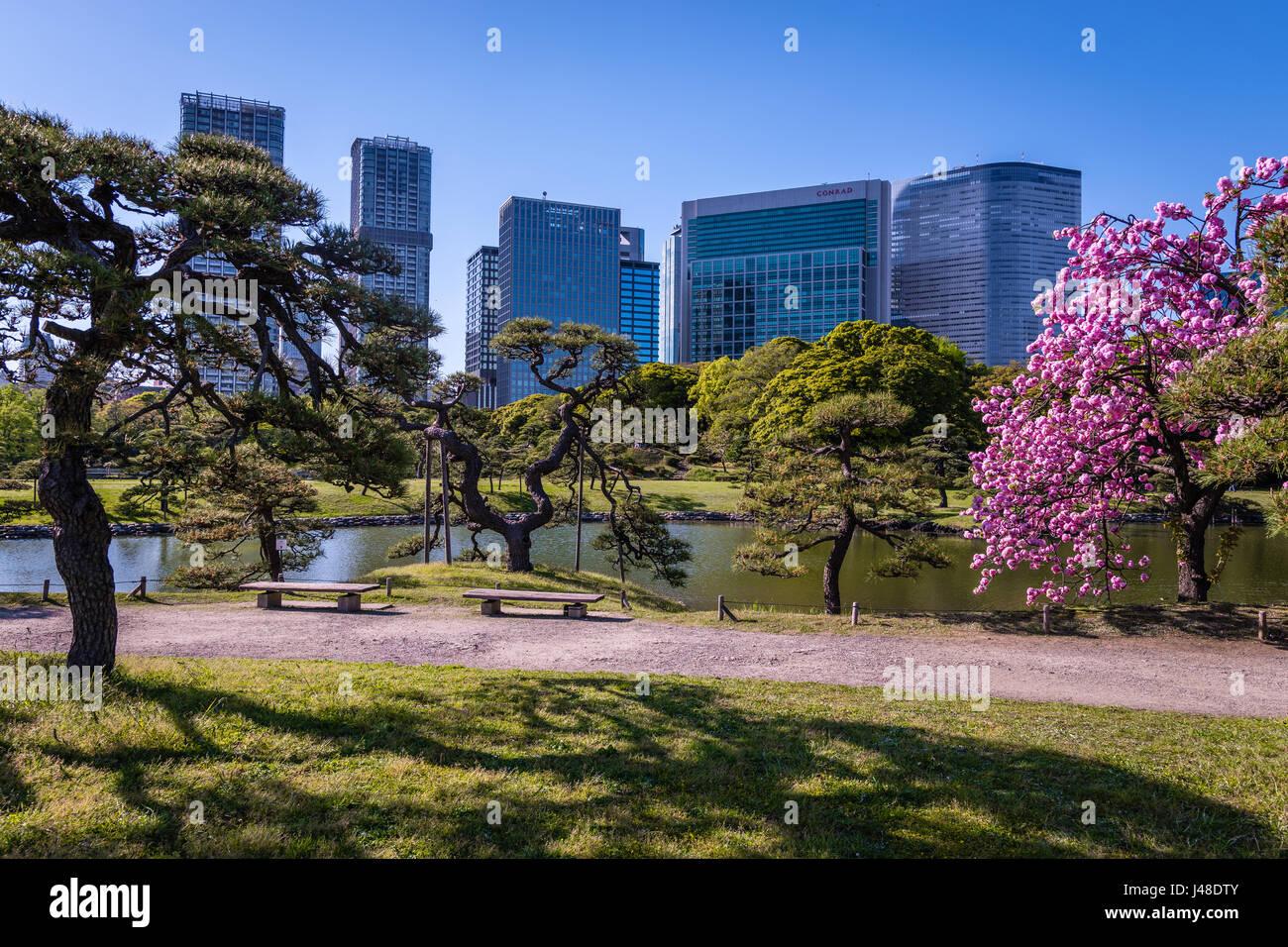 Hamarikyu Gardens in Tokyo - Stock Image
