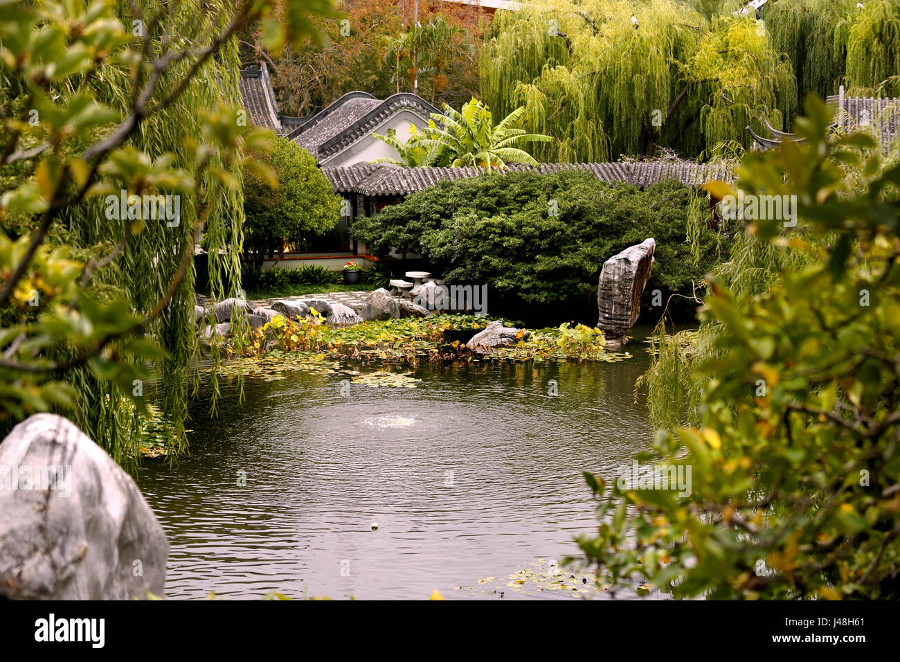 A pond at the 'Chinese Garden of Friendship' in Sydney, Australia - Stock Image