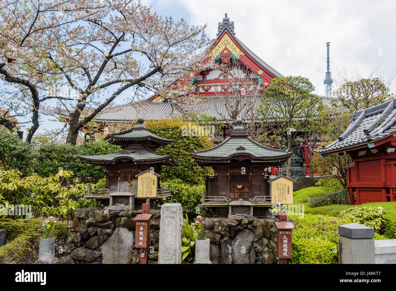 Behind the main temple building, quiet gardens with some shrines.senso-ji temple - Stock Image
