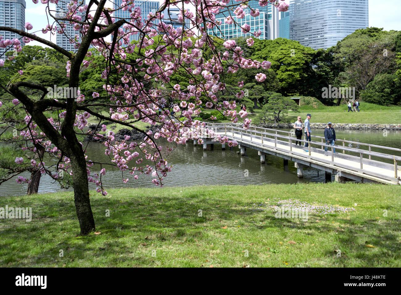 Hama Rikyu landscaped gardens Tokyo. - Stock Image