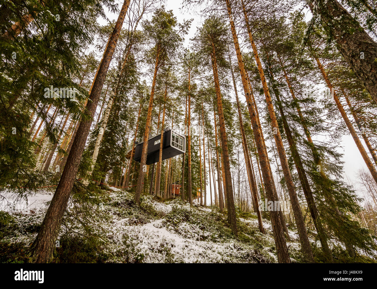 Accommodation in the woods, known as The Cabin at the Tree Hotel in Lapland, Sweden - Stock Image