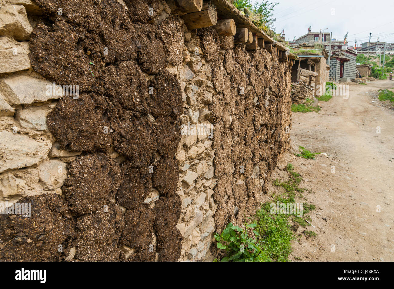 Tibetan house's wall, the locals stick cow's feces to dry it and use it as a combustible for heating water - Stock Image