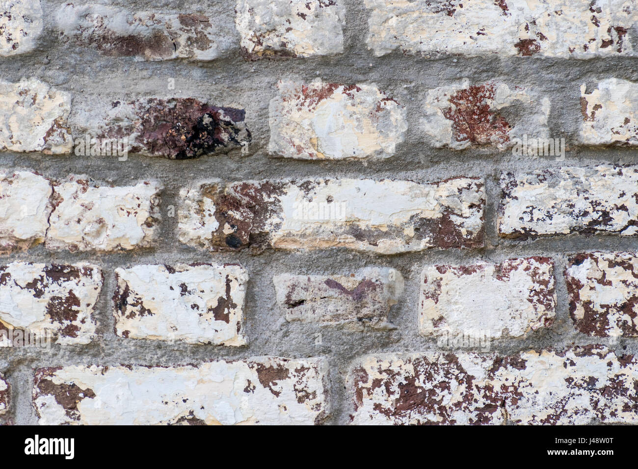 White painted red brick wall background tight shot - Stock Image