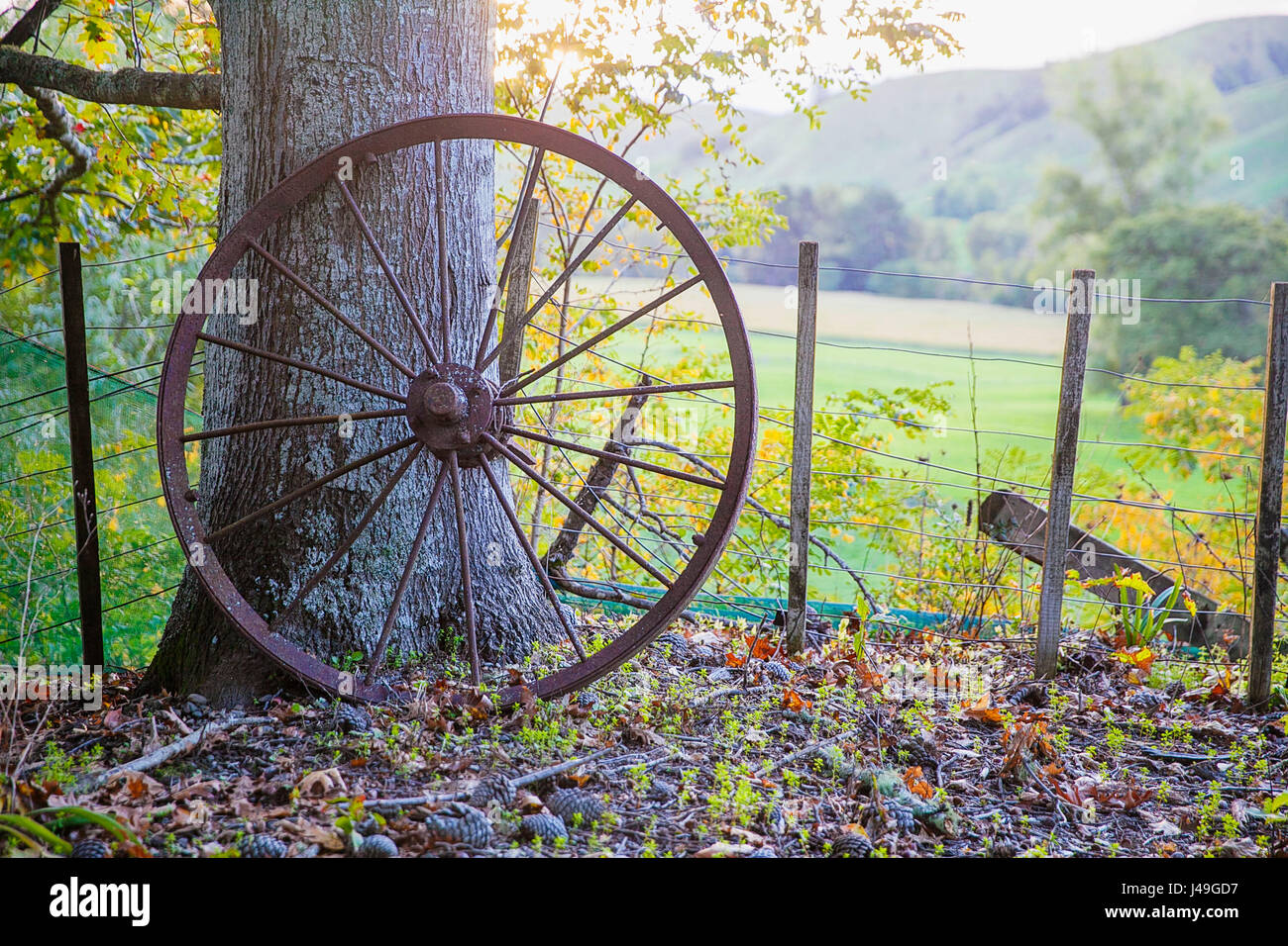 Old metal cartwheel - Stock Image