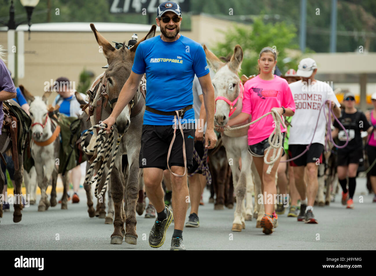 Runners and pack burros (donkeys) on parade, Idaho Springs Tommyknockers Mining Days Festival and Pack Burro Race, - Stock Image