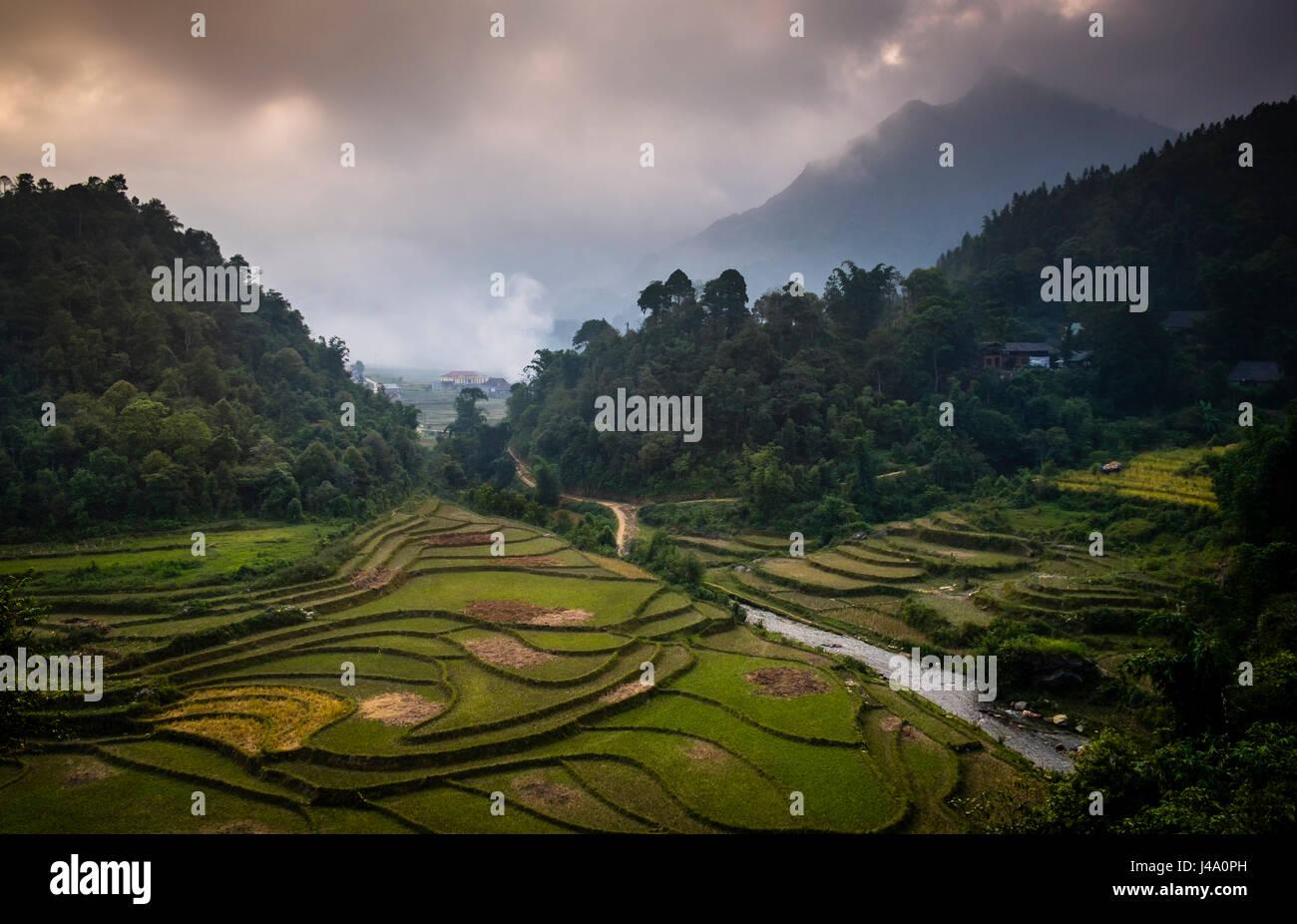 SAPA, VIETNAM - CIRCA SEPTEMBER 2014:  View of typical rice  paddy landscape in Sapa, north Vietnam. - Stock Image