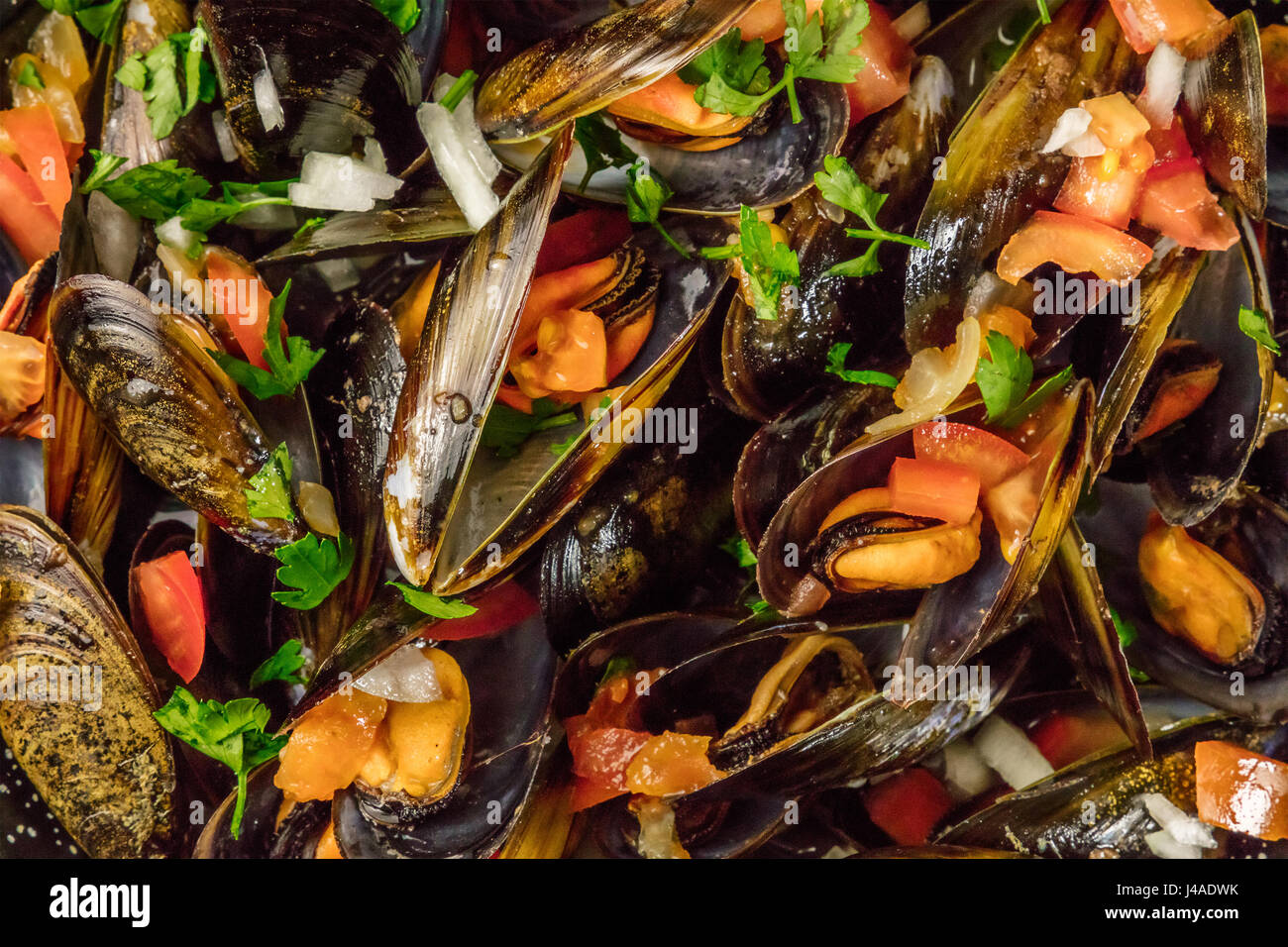 Closeup of marinara mussels, shot from above - Stock Image
