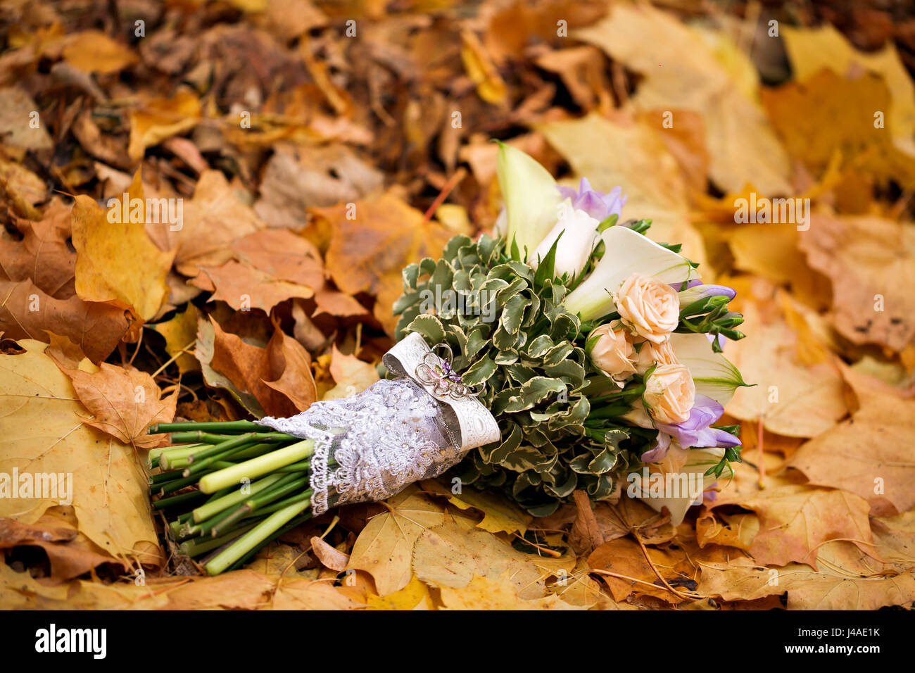 Fall Bridal Bouquet High Resolution Stock Photography And Images Alamy