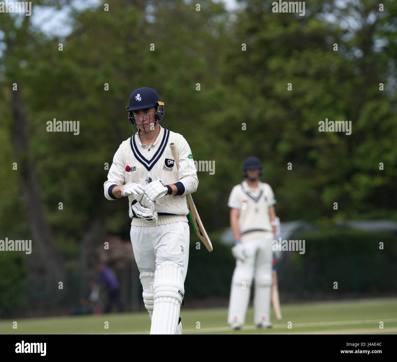 Cricket at Polo Farm, Canterbury, Kent. A batsman departs after being dismissed - Stock Image