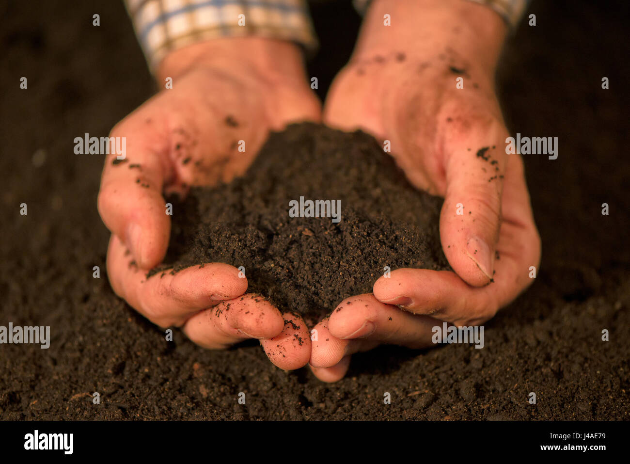 Handful of arable soil in hands of responsible male farmer, close up, selective focus - Stock Image