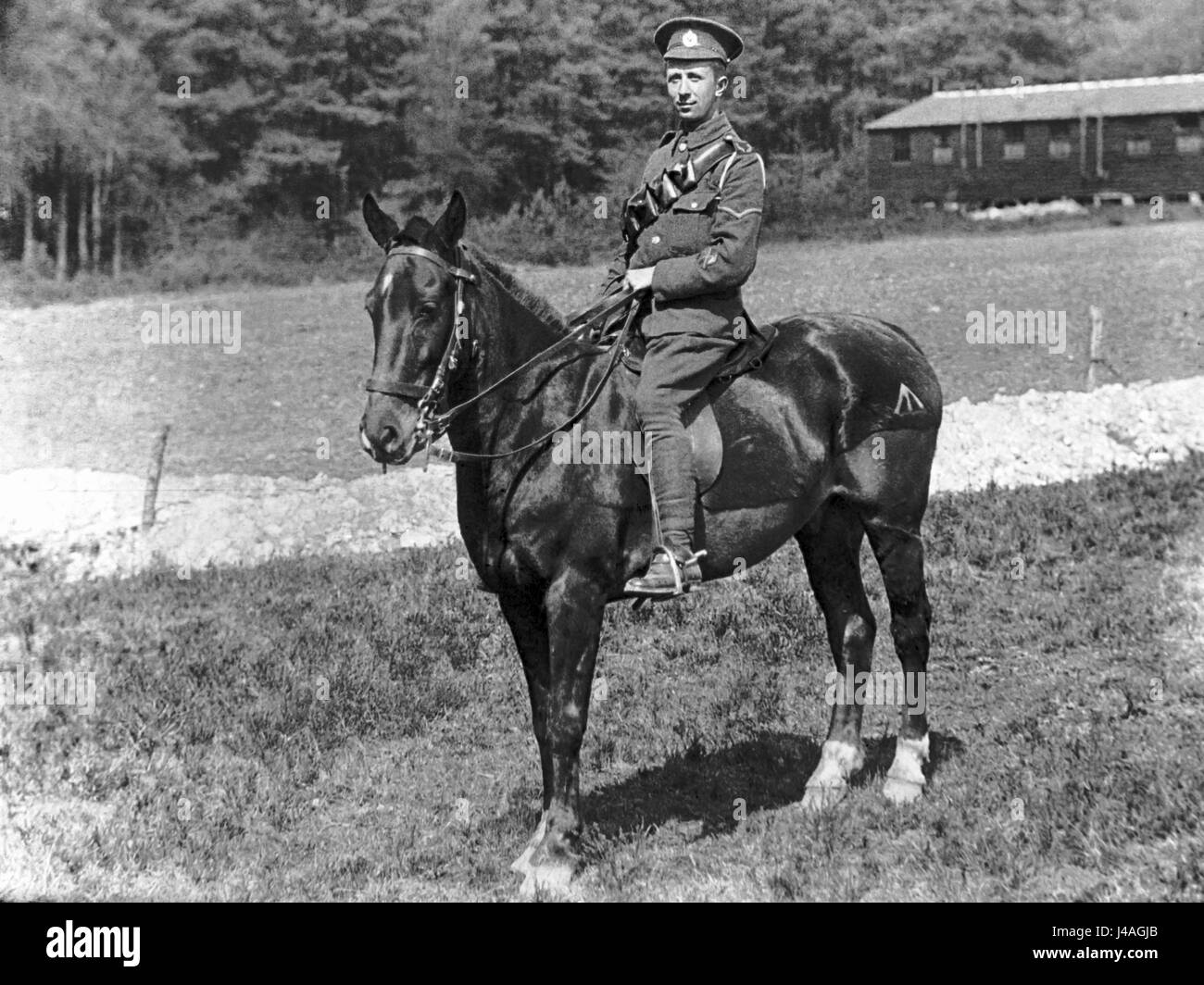 Portrait of a mounted British soldier, a signaler from the Royal Signals Corps - Stock Image