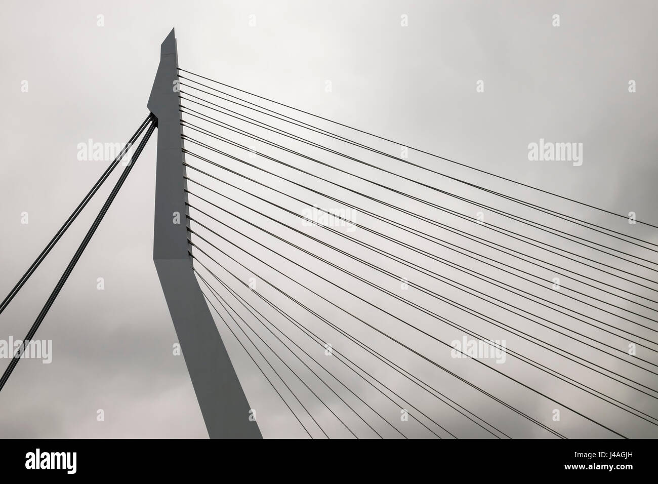 A section of Erasmusbrug, a prominent architectural feature of the Rotterdam city skyline, The Netherlands. - Stock Image