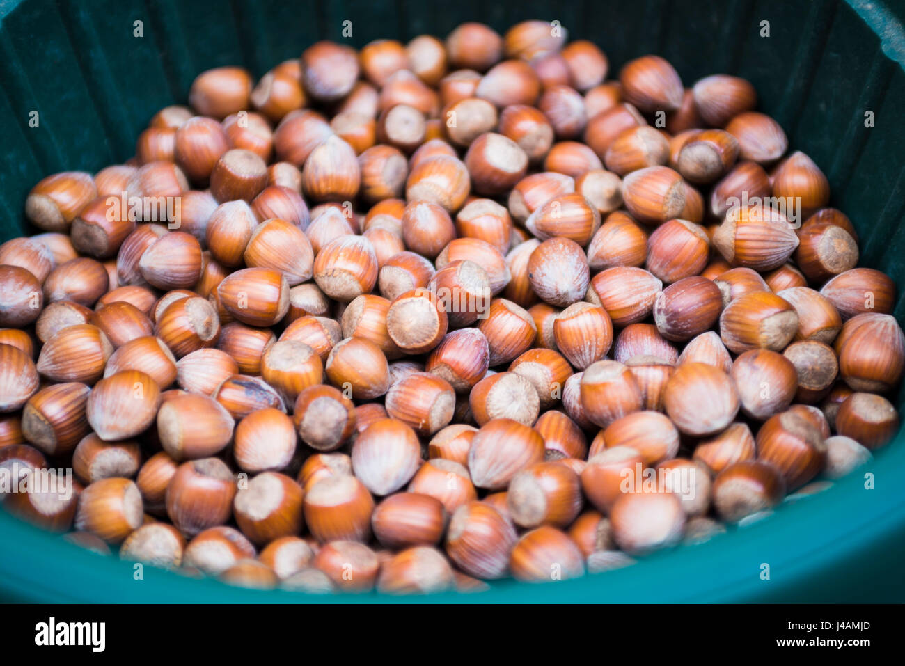 Sale of Hazelnut in bulk - Stock Image