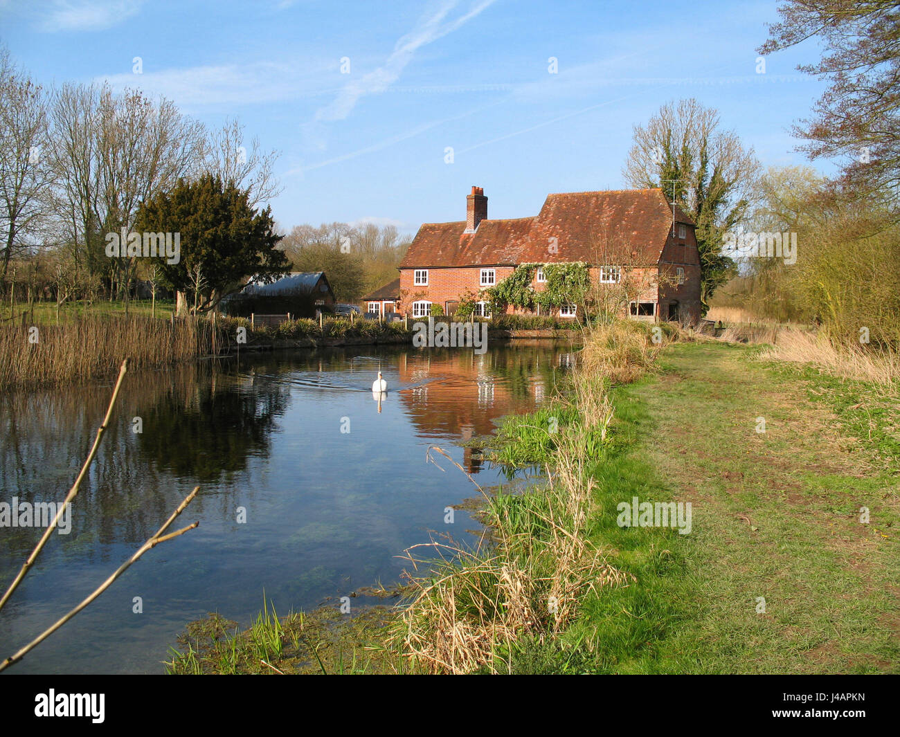 Scenic view of Greywell Mill and The White Water River with swan and water reflections. - Stock Image