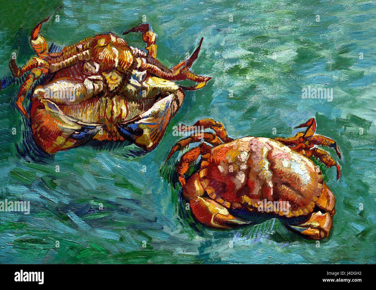 Two Crabs 1889 Vincent van Gogh 1853– 1890 Dutch The Netherlands - Stock Image