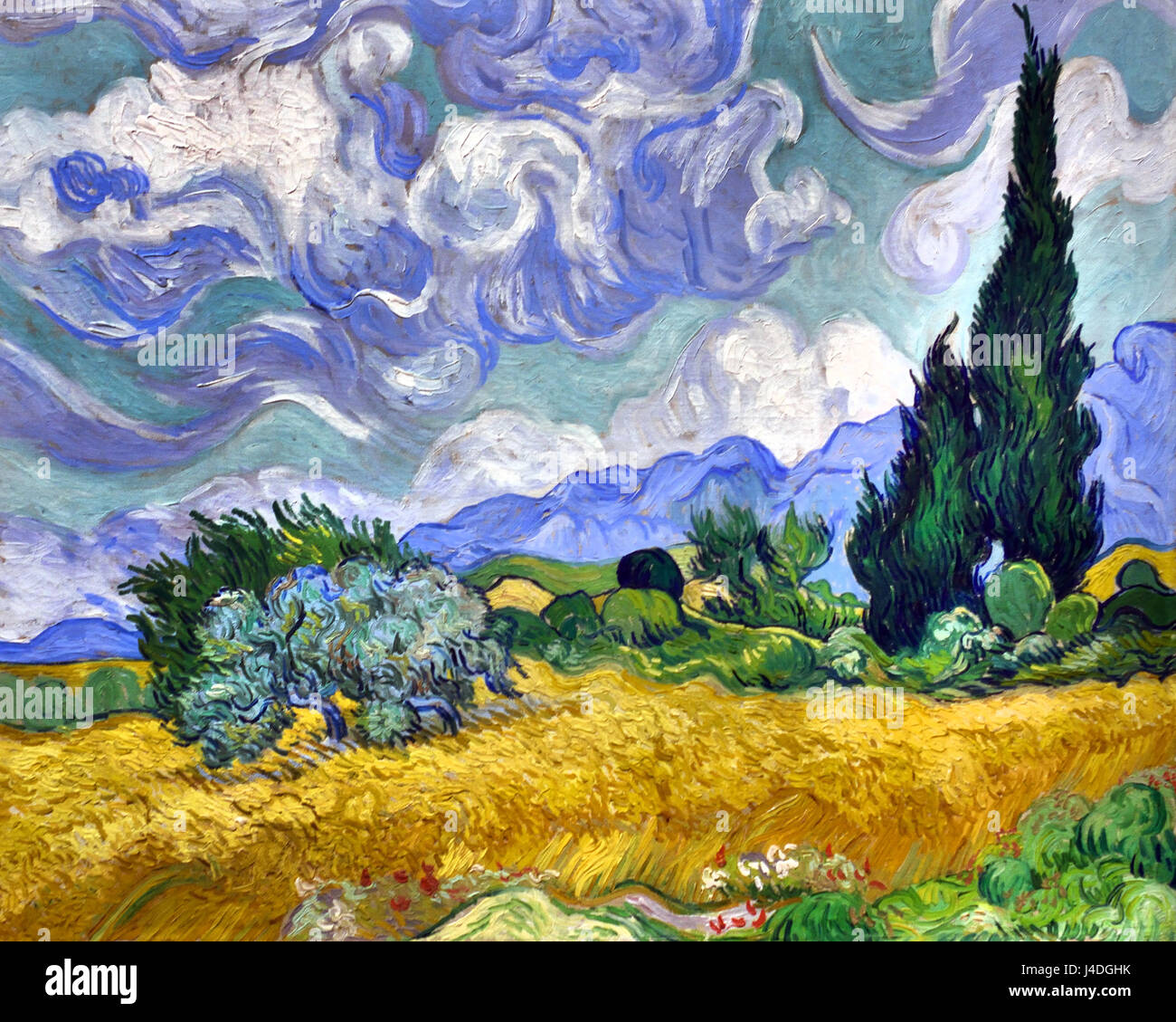 A Wheatfield with Cypresses 1889 Vincent van Gogh 1853– 1890 Dutch The Netherlands - Stock Image