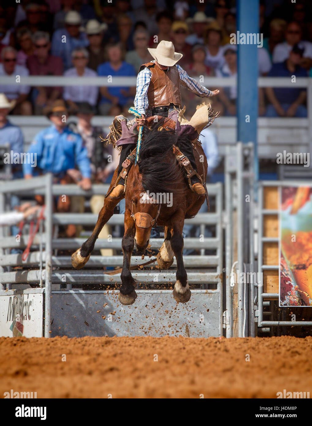 ARCADIA, FLORIDA - MARCH 9-  Horse bucking contests during the famous 84th All-Florida Championship Rodeo on March Stock Photo