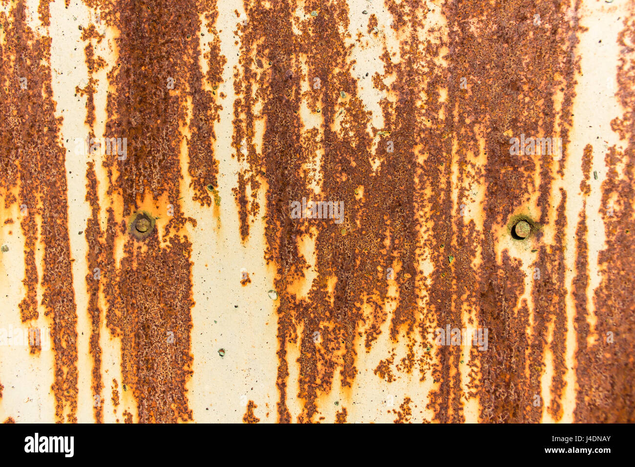 The surface of an old painted rusty steel sheet. Two nail heads. Background or texture. - Stock Image