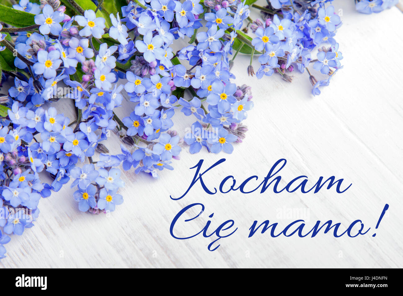 Mothers Day Card With Polish Words I Love You Mom And Blue Flowers