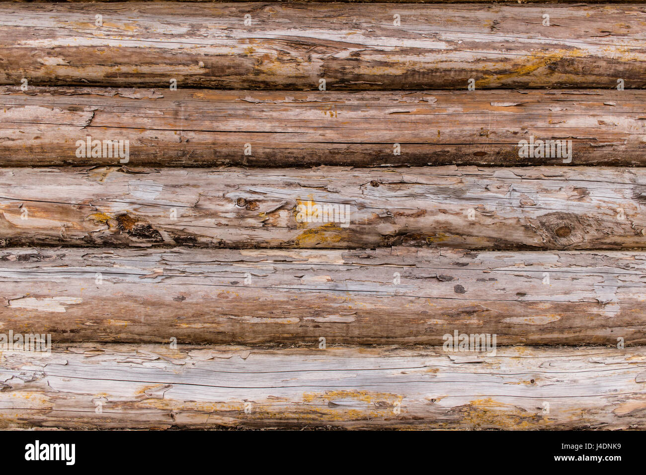 Fragment Of The Rustic Wooden House Cracked Log Wall Rural House