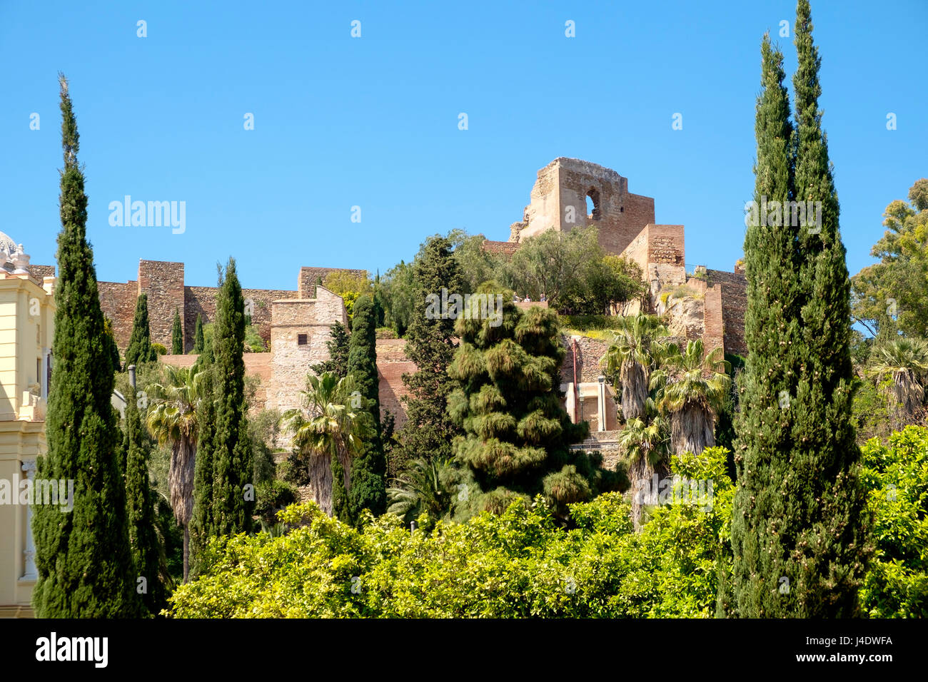 Looking through the trees of the Jardines de Pedro Luis Alonso at the Alcazaba of Malaga - Stock Image