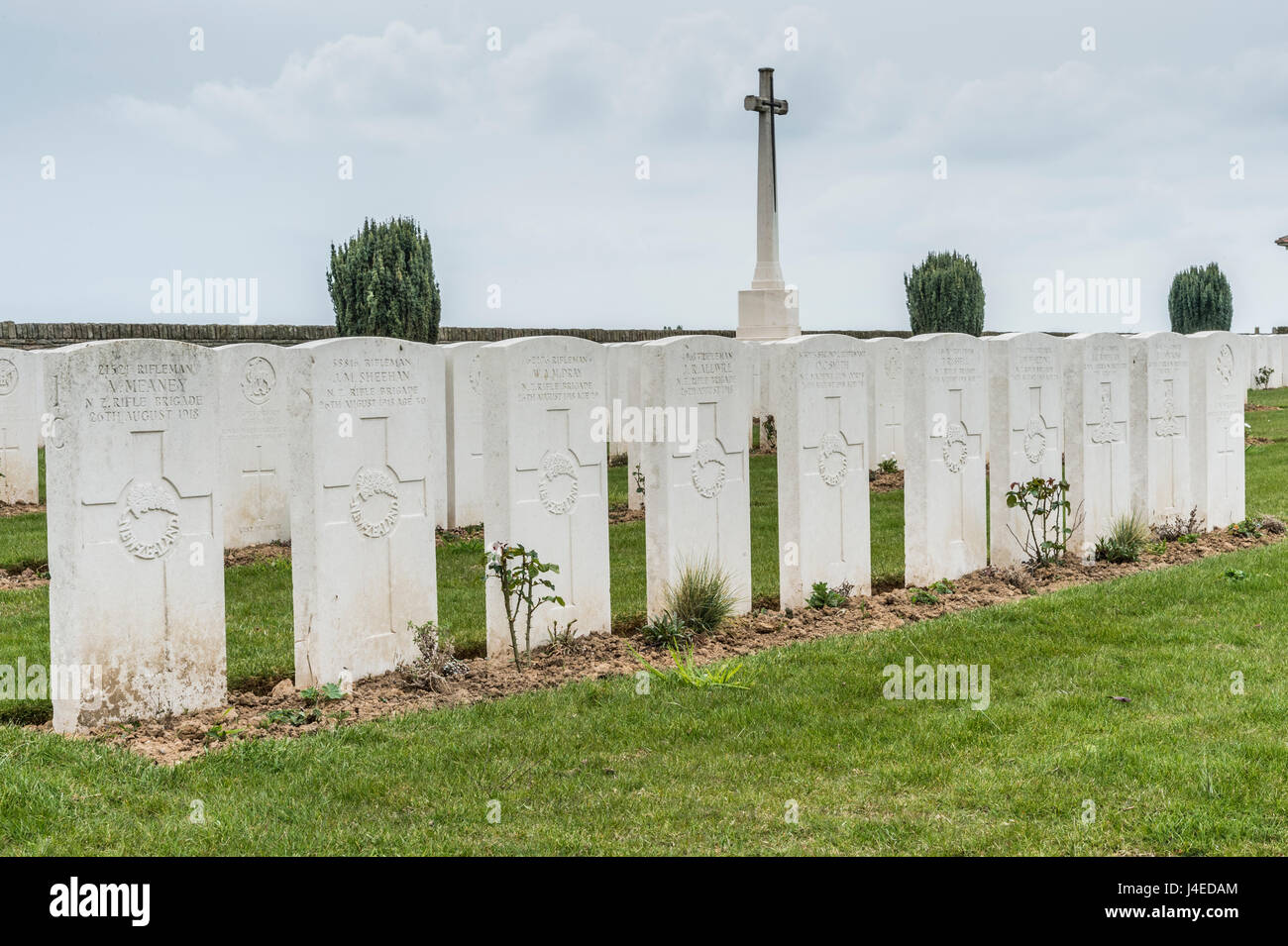 The British military cemetery of Vaulx Hill on the Somme Battlefield of Northern France with a row of New Zealand Stock Photo