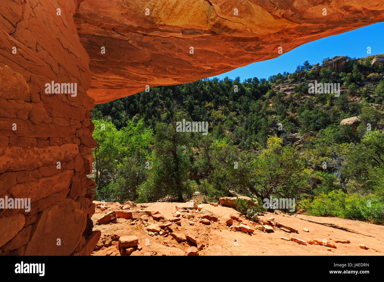 This view looks out from the House on Fire Ruin toward Mule Canyon in Bears Ears National Monument, San Juan County, - Stock Image