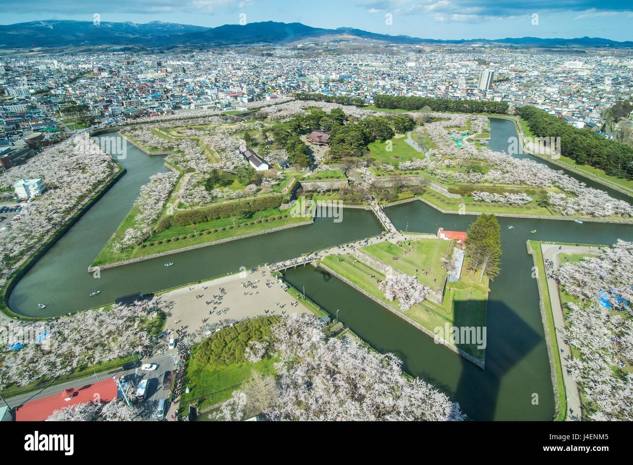 Star shaped Fort Goryokaku in the cherry blossom, Hakodate, Hokkaido, Japan, Asia - Stock Image
