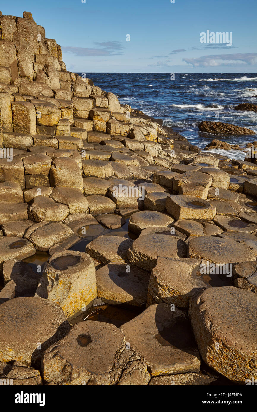 Giant's Causeway, UNESCO World Heritage Site, County Antrim, Ulster, Northern Ireland, United Kingdom, Europe - Stock Image