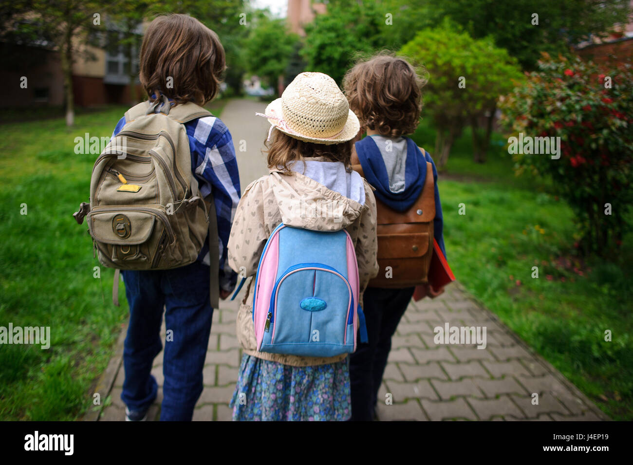 Little school students hurry on occupations. Behind shoulders at children schoolbags. Warm morning. Bright spring - Stock Image