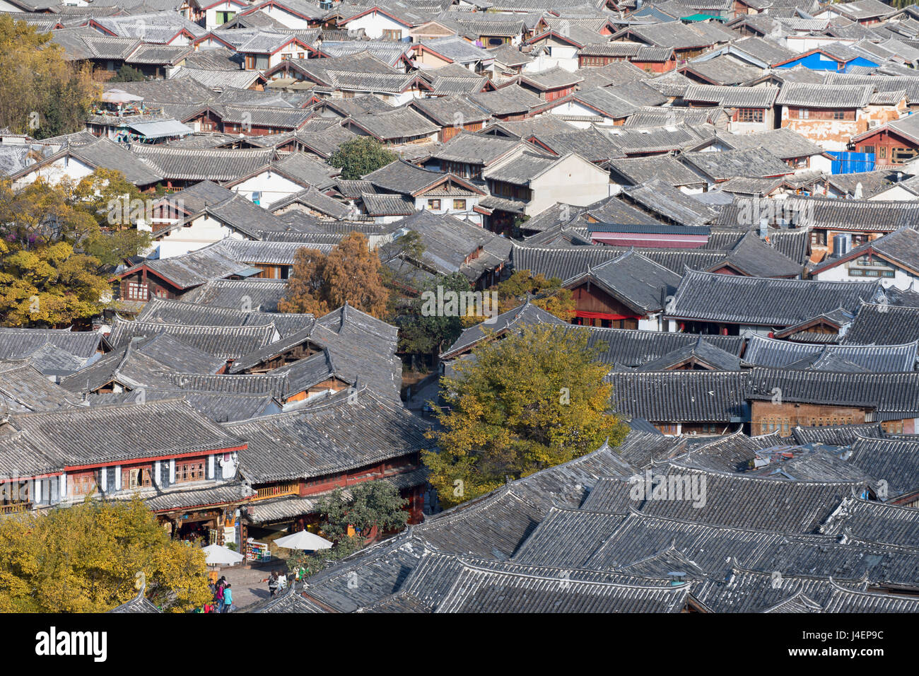 View of Lijiang, UNESCO World Heritage Site, Yunnan, China, Asia - Stock Image