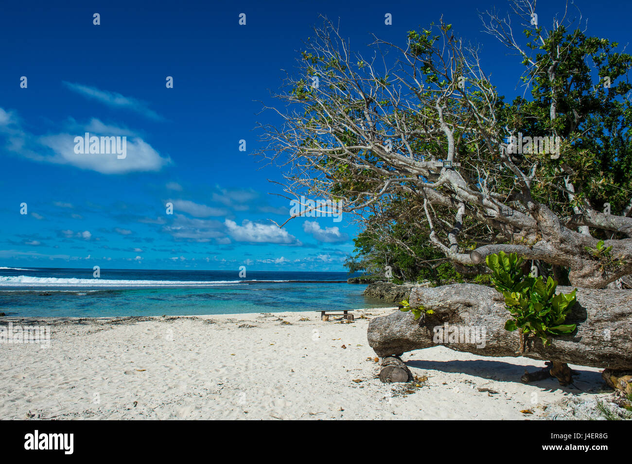 White sand beach on the north coast of Efate, Vanuatu, Pacific - Stock Image