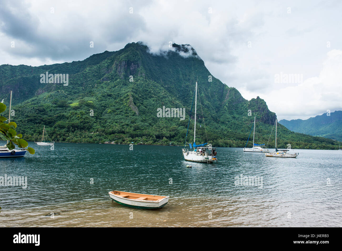 Sailing boat in Cooks Bay, Moorea, Society Islands, French Polynesia, Pacific - Stock Image