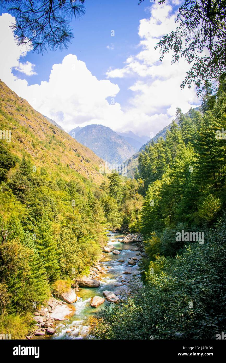 Nature in Himachal Pradesh. - Stock Image