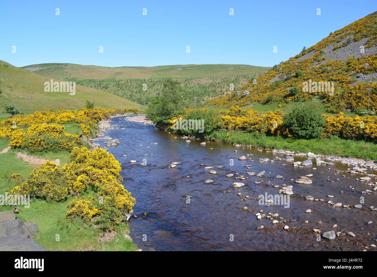 River Breamish at Ingram - Stock Image