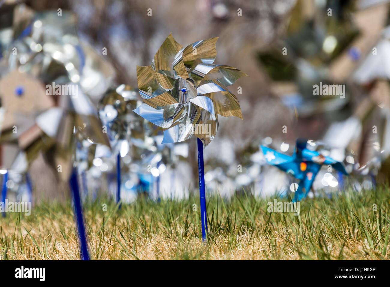 Pinwheels for Prevention, symbols for Prevention Against Child Abuse month, central Colorado, USA - Stock Image