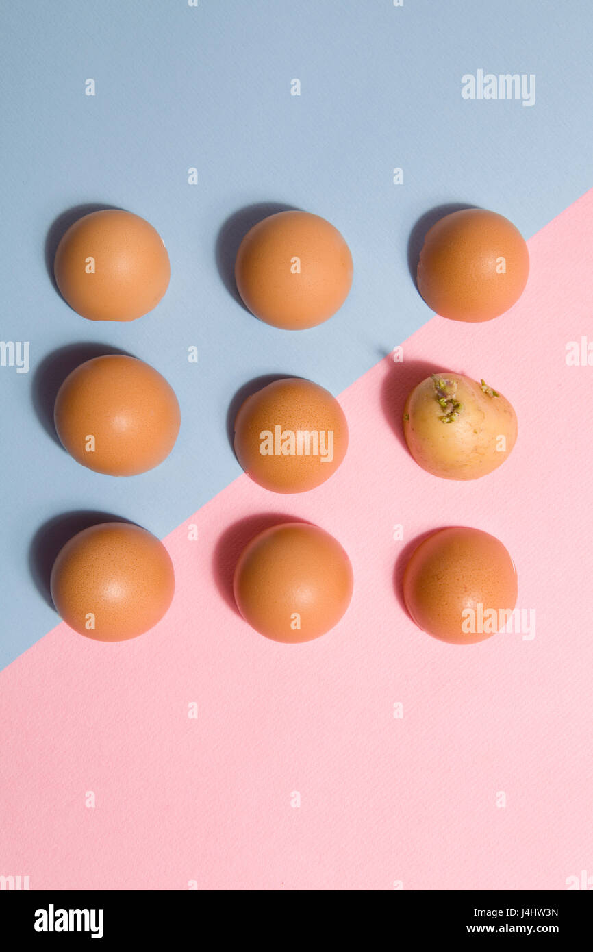 Eggshells lined up with a potato hidden in the batch blue and pink background with black shadow - Stock Image
