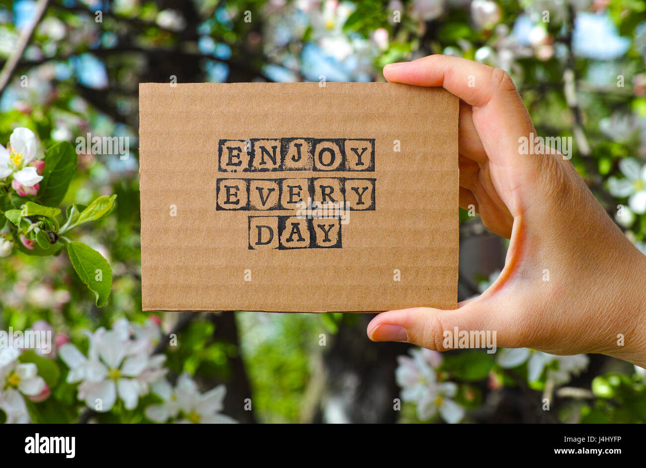 Woman hand holding cardboard card with words Enjoy Every Day made by black alphabet stamps opposite blooming tree - Stock Image