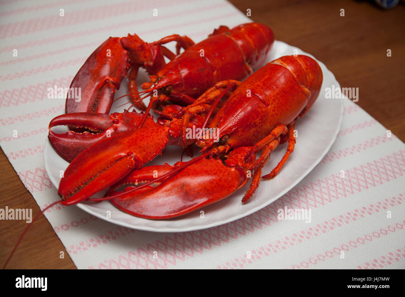 LOBSTER READY TO EAT  2017 - Stock Image