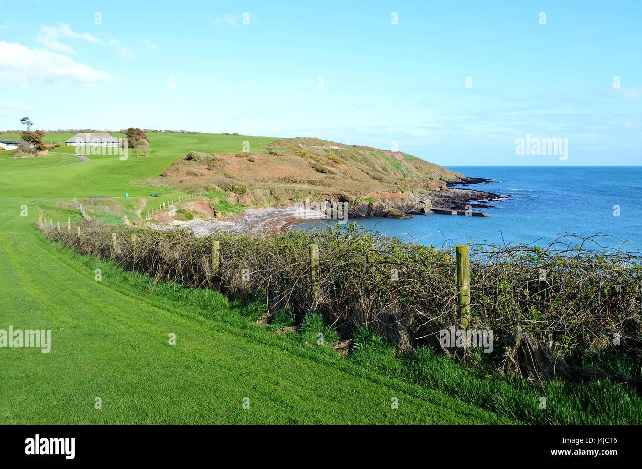 the coast at trabolgan in county cork, ireland - Stock Image
