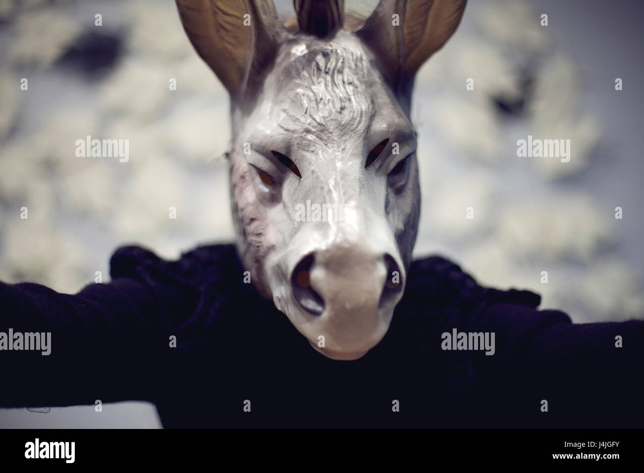 A woman wearing a donkey mask doing a selfie Blured color photography - Stock Image