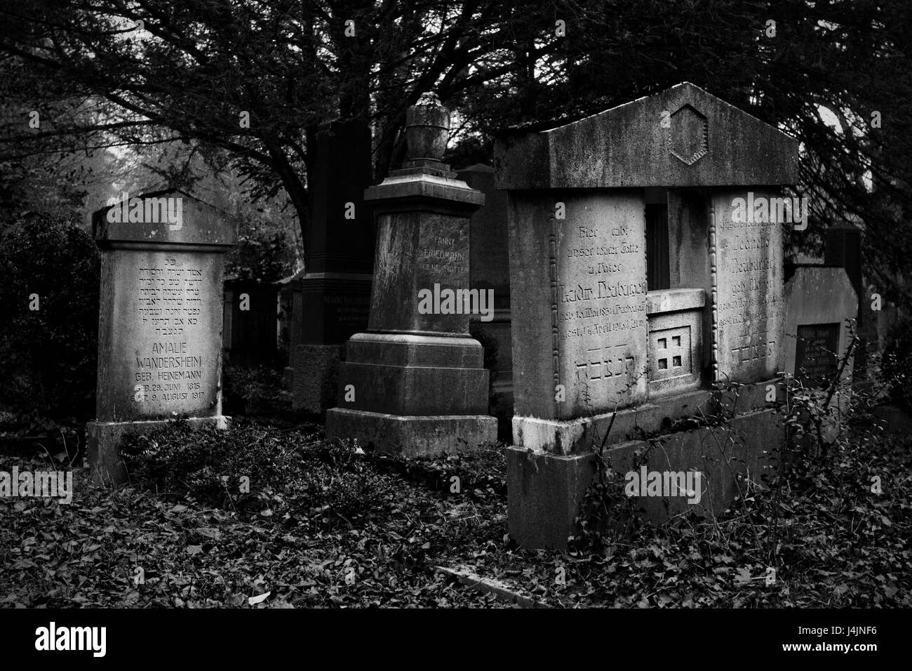 Ulm, Germany - November 1, 2013: Old jewish graves and tombstones in the main cemetery (Hauptfriedhof) on November - Stock Image