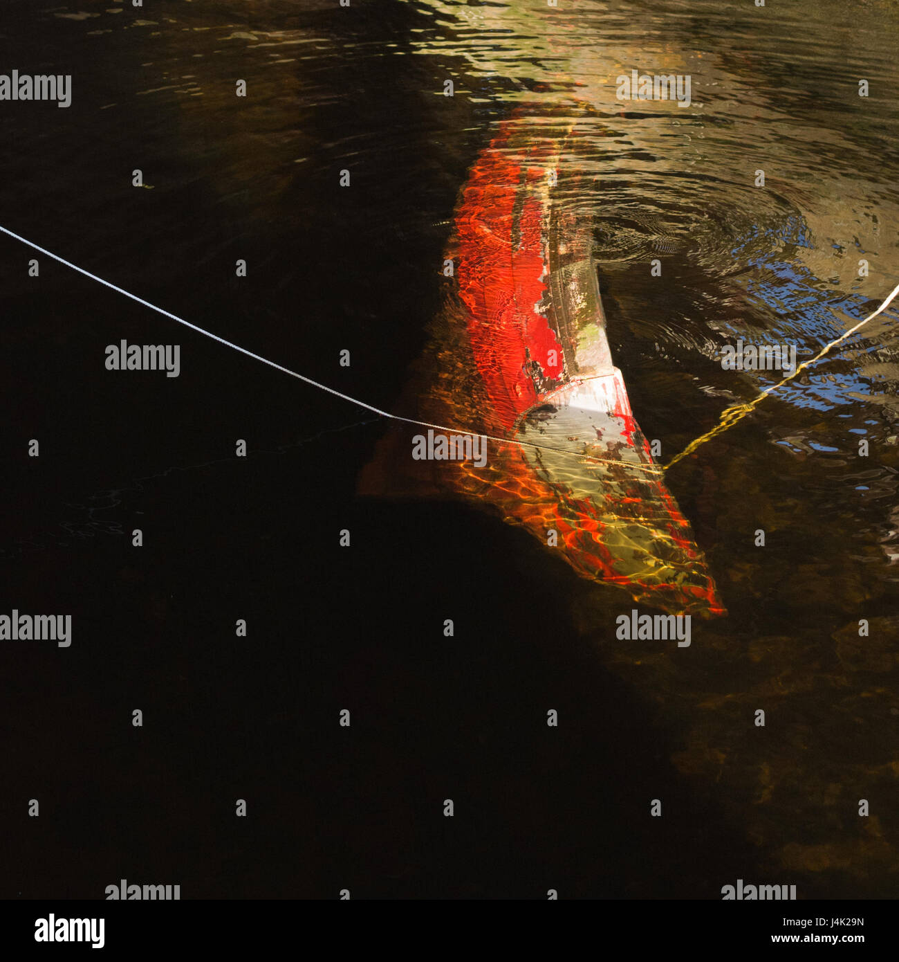 Boat sinking - old small red rowing boat sinking - Stock Image
